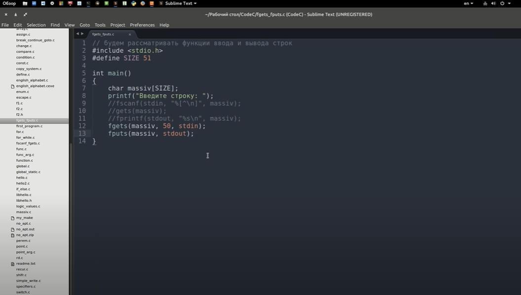 На фото изображено окно программы Sublime text.