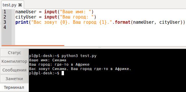 Функции print() и input(): в Python